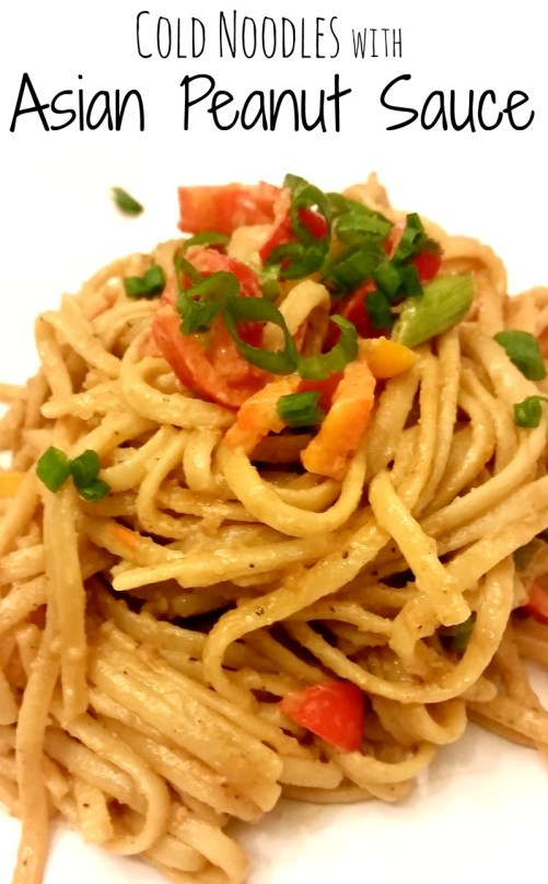 Cold Noodles with Asian Peanut Sauce