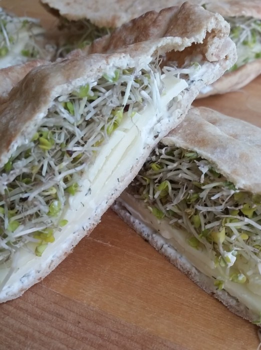 Cheese & Sprout Sandwich