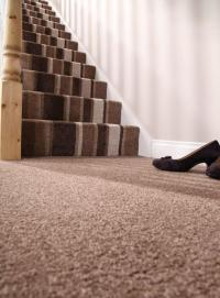 Saxony Carpets Reviews  Floor Matttroy
