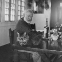 ¿Que pensaría Hemingway?