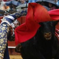 FERIA DE ABRIL:Juan Pedro, el ganadero perfecto