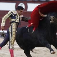 Feria de San Isidro: Arrebato inconcluso