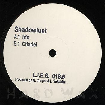 Cover art - Shadowlust: LIES-018.5