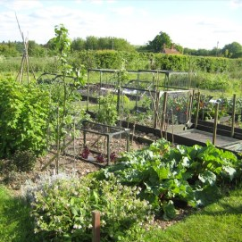 Allotment-small-holdings-015-small