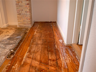 Hardwood Floors Guide  A guide to hardwood floors