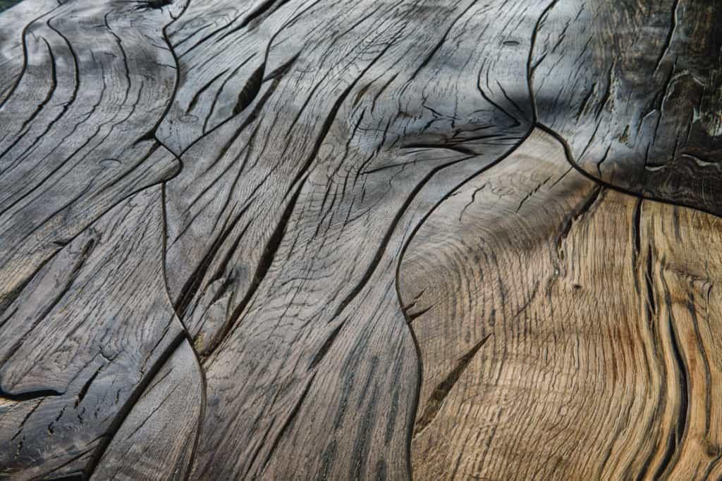 Bog Oak by Sunshine Floor Supplies Inc  Hardwood Floors