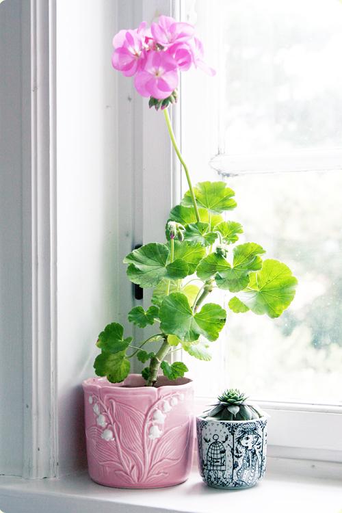 floral-design-hardy-farm