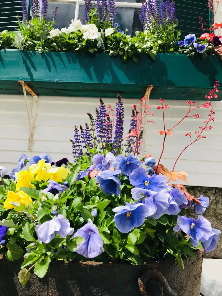 flower boxes at one of maine more beautiful wedding venues