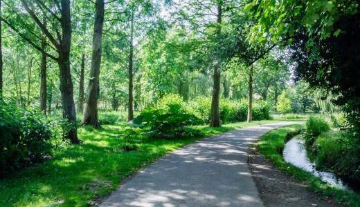 少しつらい時でも走ってみる リラックスして汗をかく ストレス解消