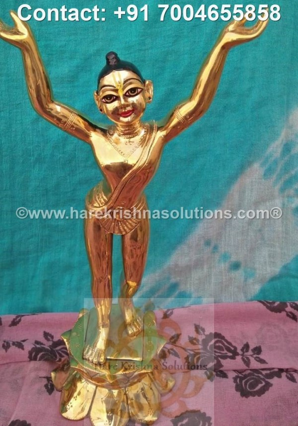 Gaura Nitai 12 inches (12)