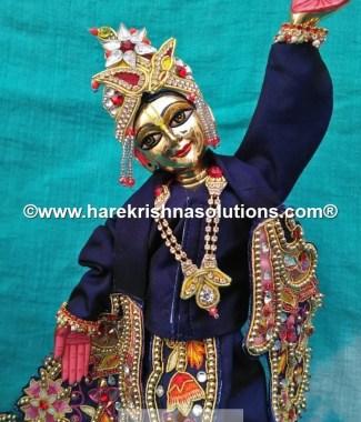 Gaura Nitai 12 inches-Dark Blue-Pink flowers 9