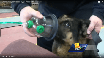 Humane Society of Harford County Donates Pet Oxygen Masks