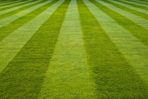 April is National Lawn Care Month