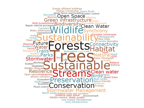 "The word cloud showing responses to the workshop question, ""What three words come to mind when you hear 'Green Infrastructure'?"""