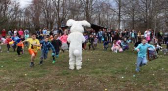 Pets, BBQ, Arts and Easter Egg Hunts