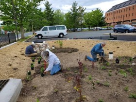 Harford County Builds Environmentally-Friendly Rain Garden in Bel Air