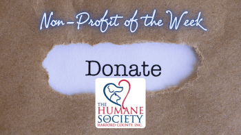 2020 Favorite Local Charity/Nonprofit