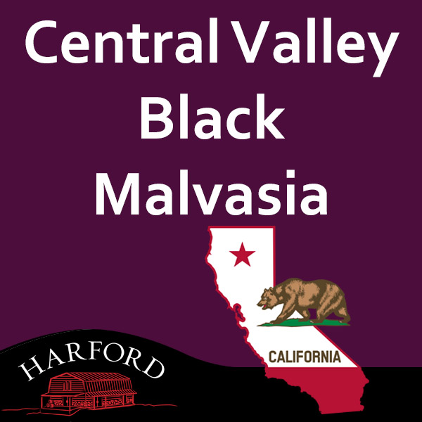 Central Valley Black Malvasia