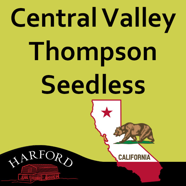 Central Valley Thompson Seedless