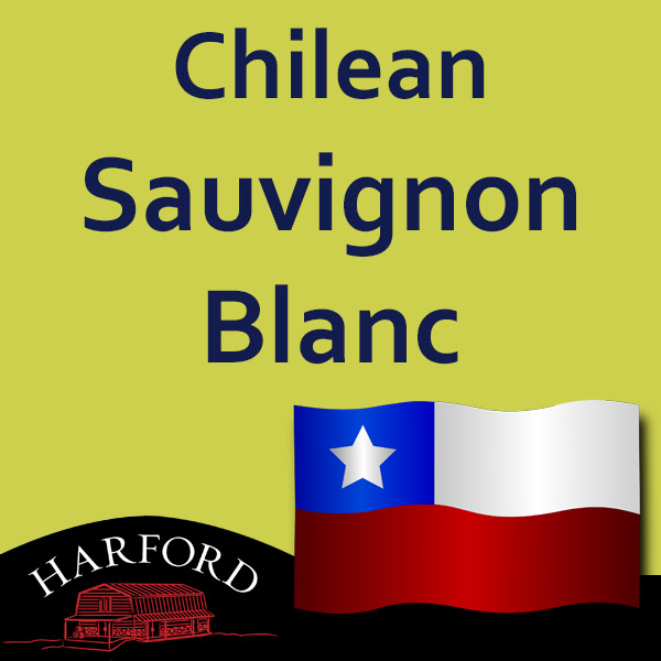 Chilean Grape Sauvignon Blanc