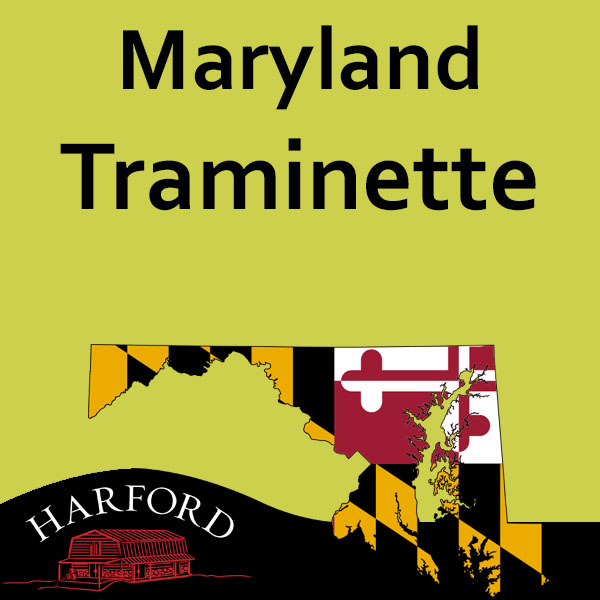 Maryland Traminette (Note all Maryland Grape please email your order for availability  to mail@harfordvineyard.com)