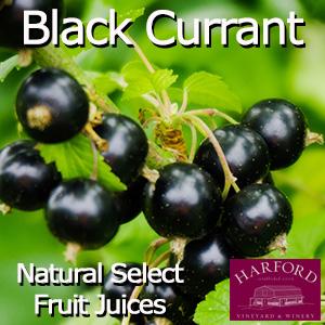 Natural Select Black Currant Juice