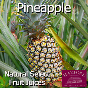 Natural Select Pineapple Juice