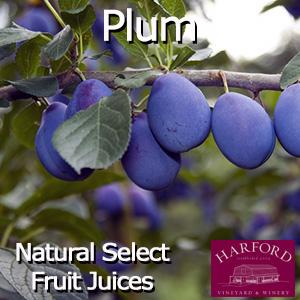 Natural Select Plum Juice