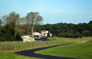 harford-vineyard-and-winery-forest-hill-maryland