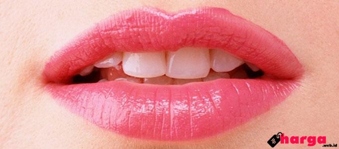 Cara Pakai & Harga Lipstik Laneige Two Tone Lip Bar di