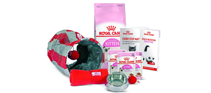 Royal Canin Kitten (credit: animeddirect)