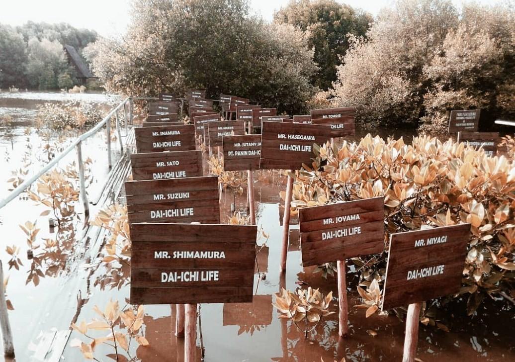 tiket masuk hutan mangrove pik