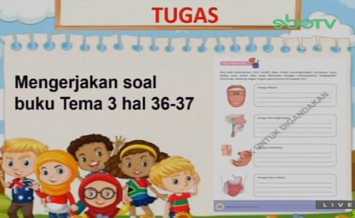 Soal dan Jawaban SBO TV 28 Agustus SD Kelas 5