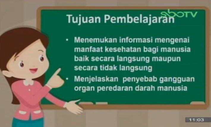 Soal dan Jawaban SBO TV 7 Oktober SD Kelas 5