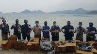 TNI AL Gagalkan Penyelundupan Baby Lobster Senilai Puluhan Miliar