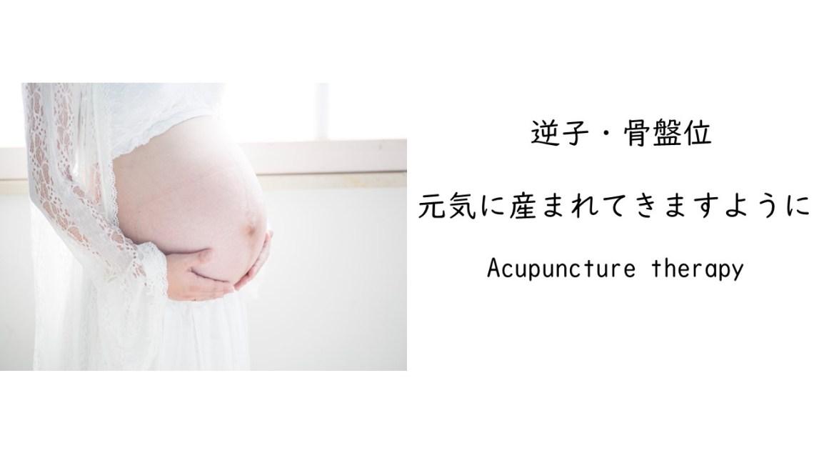 逆子治療紹介