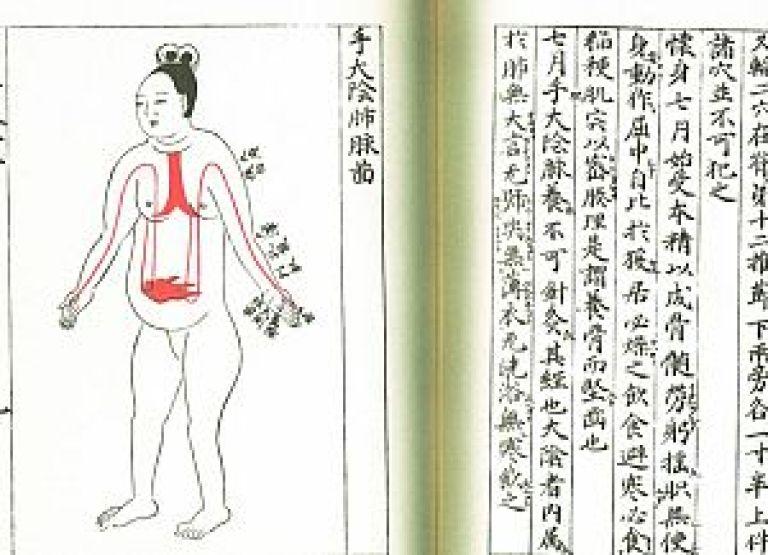 医心方の妊婦図の写真