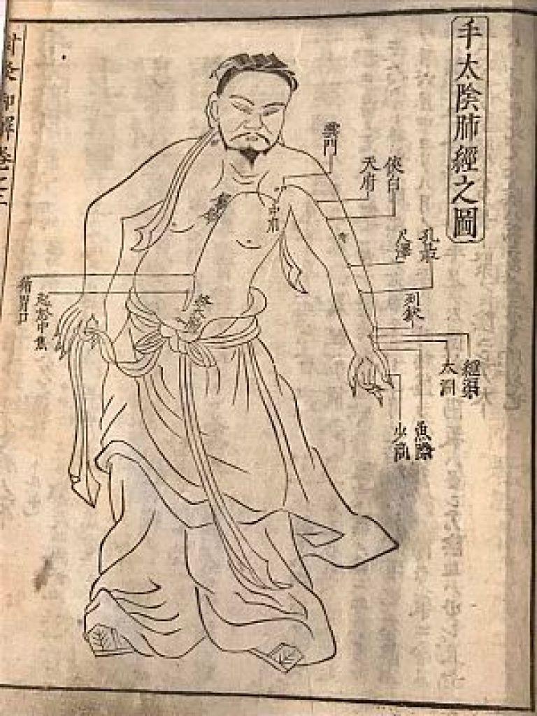 十四経発揮和語鈔の手太陰肺経の図