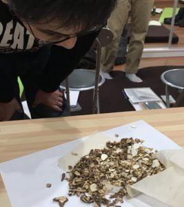 鍼道五経会 漢方湯液学のキホン