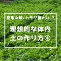 皇帝の鍼/カラダ編vol.7  理想的な体内土の作り方・その④