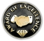 213 2611 1 - Award of Excellence Pin