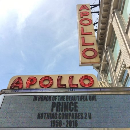 prince at the apollo
