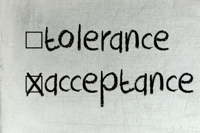 tolerance-vs-acceptance in harlem1