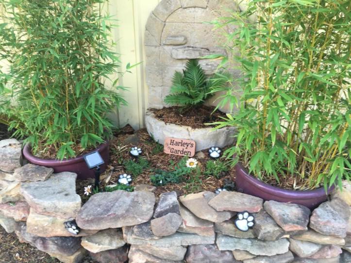 Harley's garden