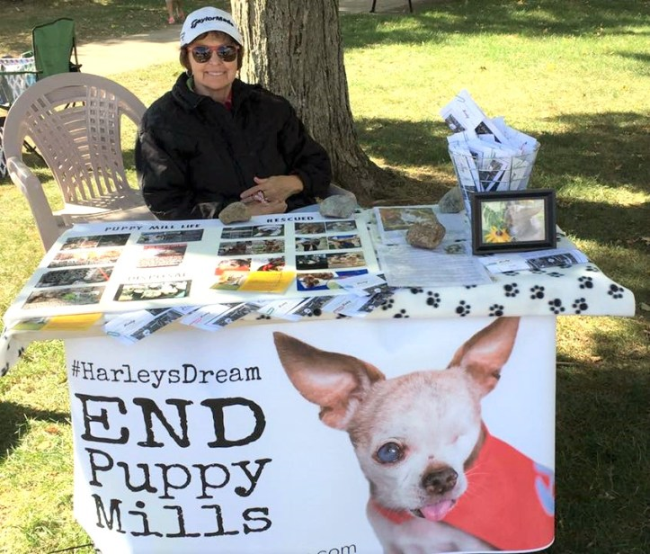 Carole Matthew sharing #HarleysDream during a local event.