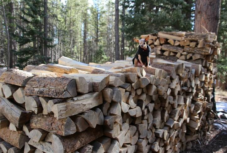 fernando-firewood-cabin