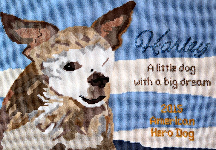 needlepoint-gift-harley-from-mimi-1