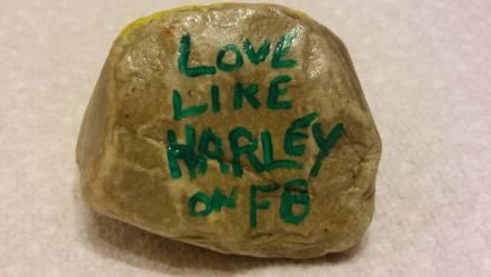 LLH Rocks (13)