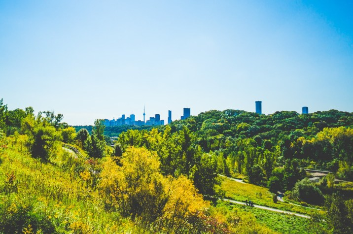 don valley (12)