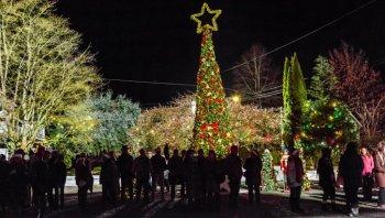 its christmas eve (4)